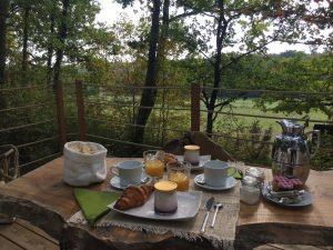 Bulles nature amoureux petit déjeuner bordeaux landes